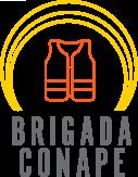 Comisión Brigada CONAPE